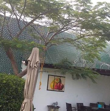malla ciclonica cuernavaca VASAY